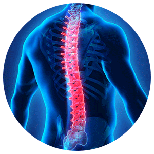 Best Ortho hospital in Coimbatore for Back pain